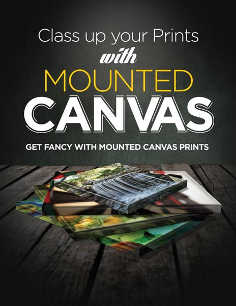 custom signs - MountedCanvas 01 - Custom Signs, Banners, Car Magnets and More – Sign 2000